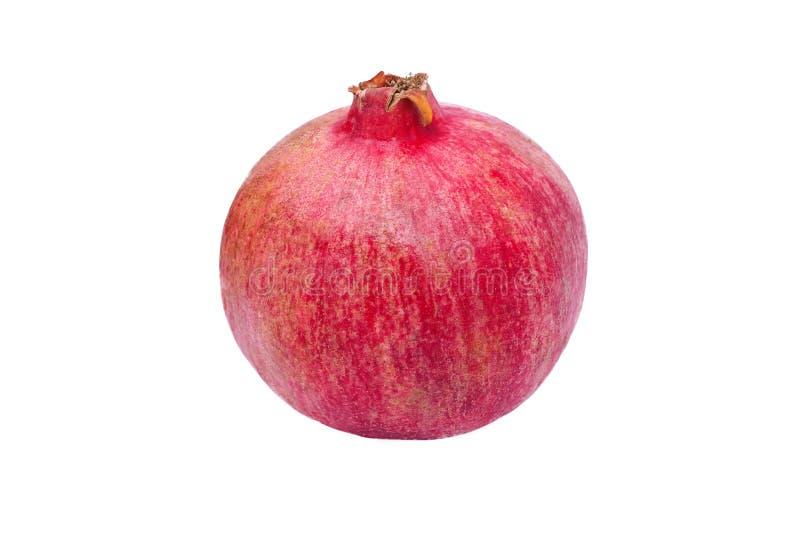 Één gehele granaatappel stock afbeelding