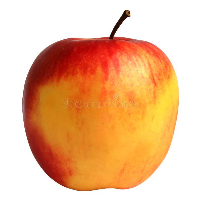Één gele appel zonder achtergrond stock fotografie