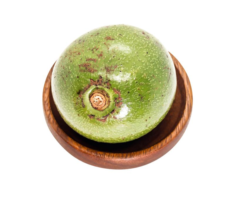 Één groene Thaise avocado op houten, witte achtergrond royalty-vrije stock fotografie
