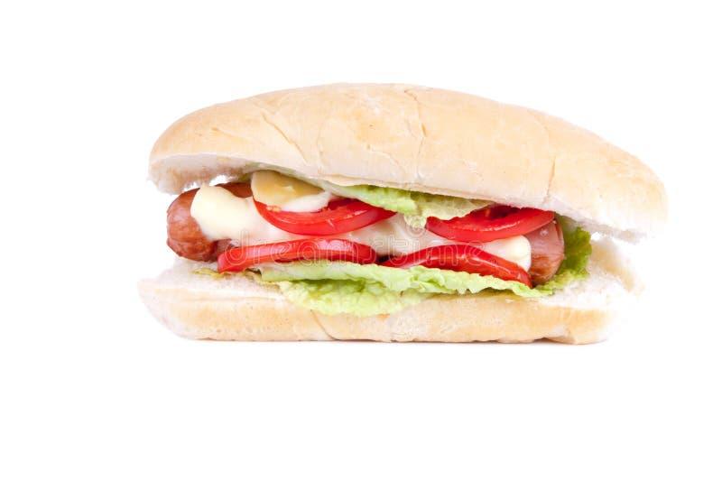 Download Één heerlijke hotdog stock afbeelding. Afbeelding bestaande uit sinaasappel - 29508213