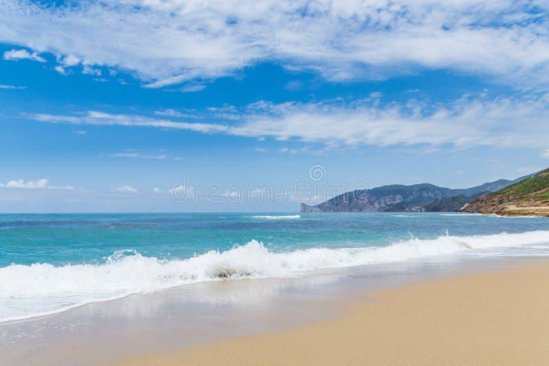 Één het strand royalty-vrije stock foto's