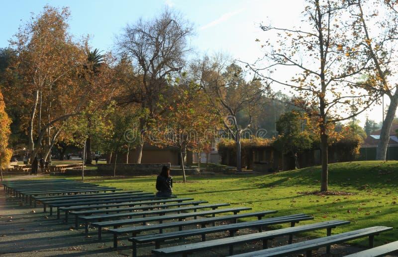 Één ochtend bij het park Pasadena stock afbeelding
