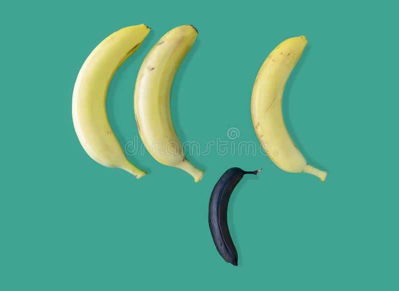 ??n overrijpe banaan onder gele die bananen op groene achtergrond, Concept worden ge?soleerd zwakheid tegenover macht royalty-vrije stock foto's