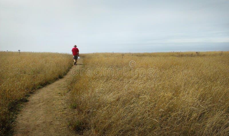 Één persoon die onderaan een weg naar een blauwe horizon lopen royalty-vrije stock foto's