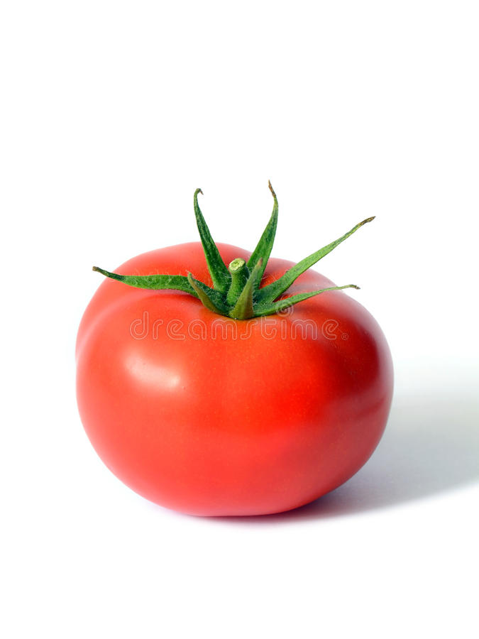 Één Rijpe Tomaat stock afbeeldingen