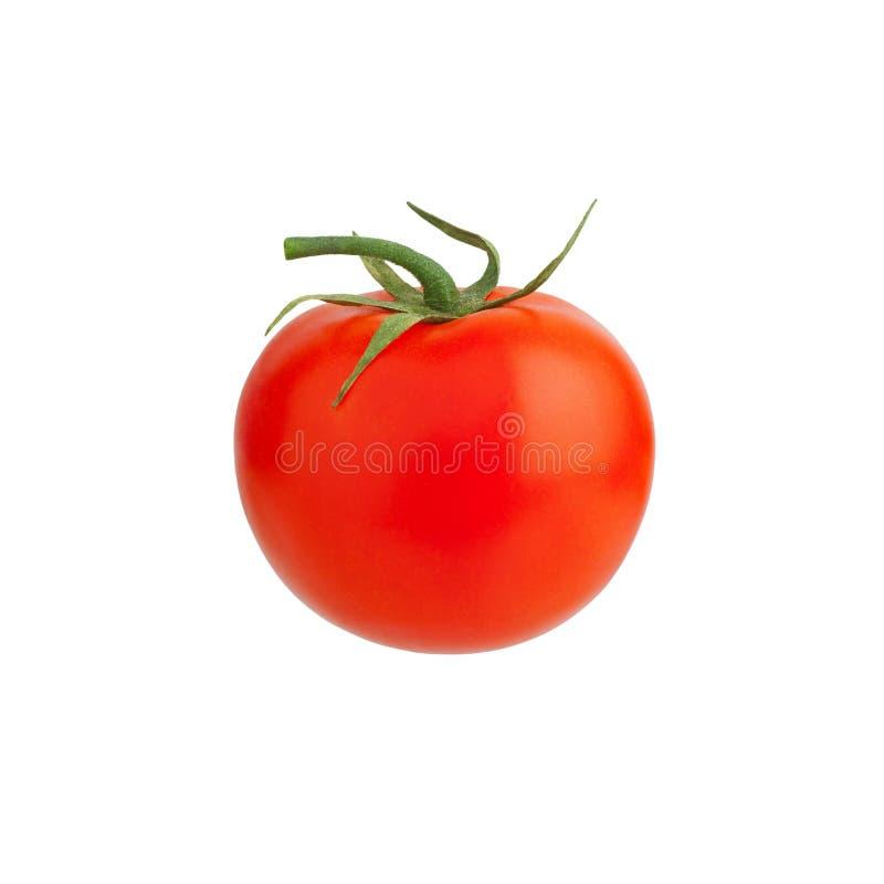 Één rode rijpe tomaat met groene bladeren en de stam op witte achtergrond isoleerden dicht omhoog, enige mooie gehele tomaat royalty-vrije stock fotografie