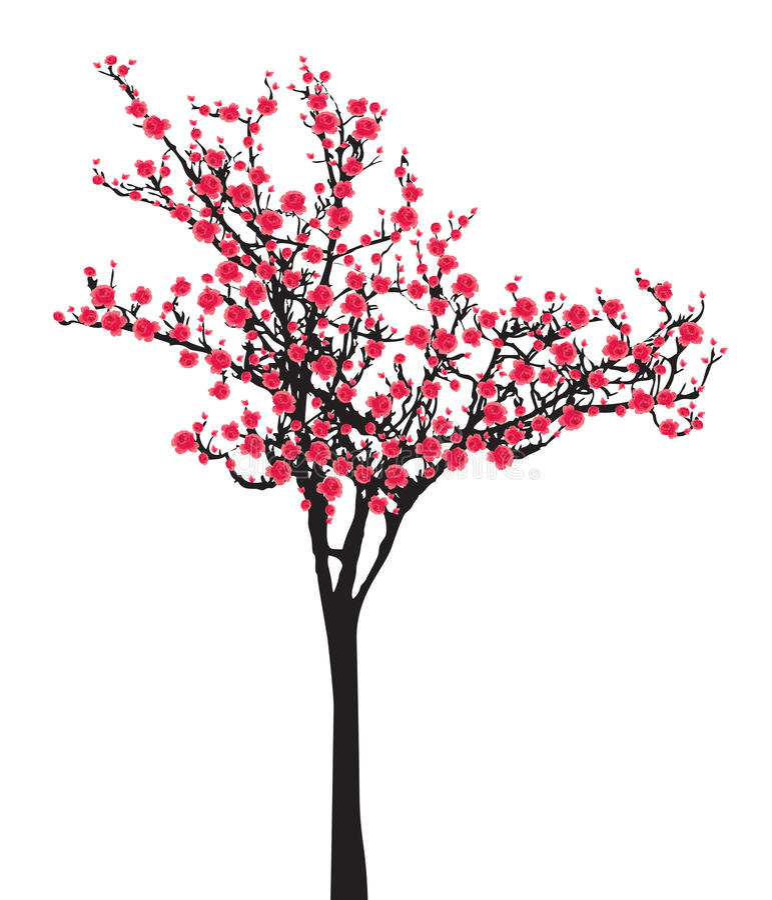 Één roze boom van volledige bloeisakura (Kersenbloesem) op witte achtergrond stock illustratie