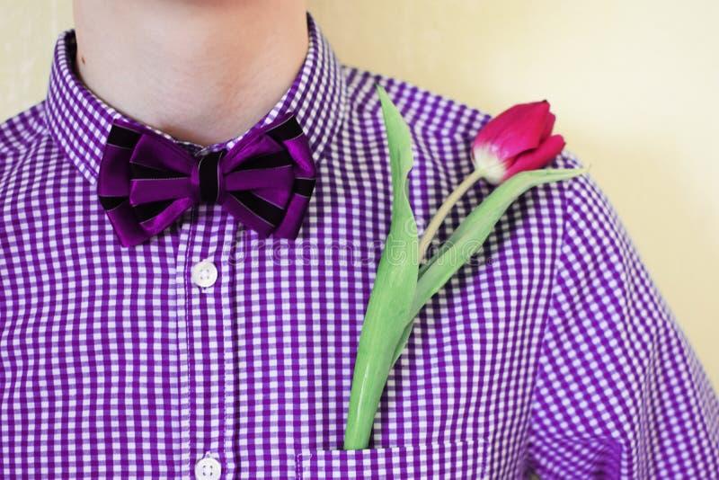 Één roze tulp in violette purpere overhemdszak met vlinderdas