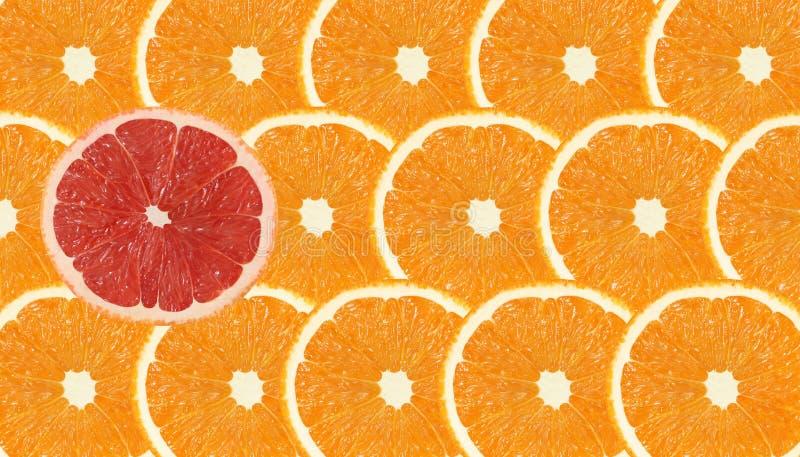 Één tribune van de grapefruitplak uit oranje vruchten royalty-vrije stock afbeeldingen