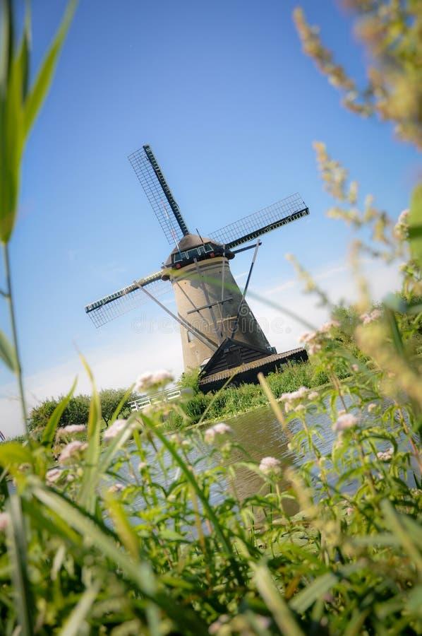 Één van de talrijke molens die op de rivieren van Kinderdijk drijven stock foto's