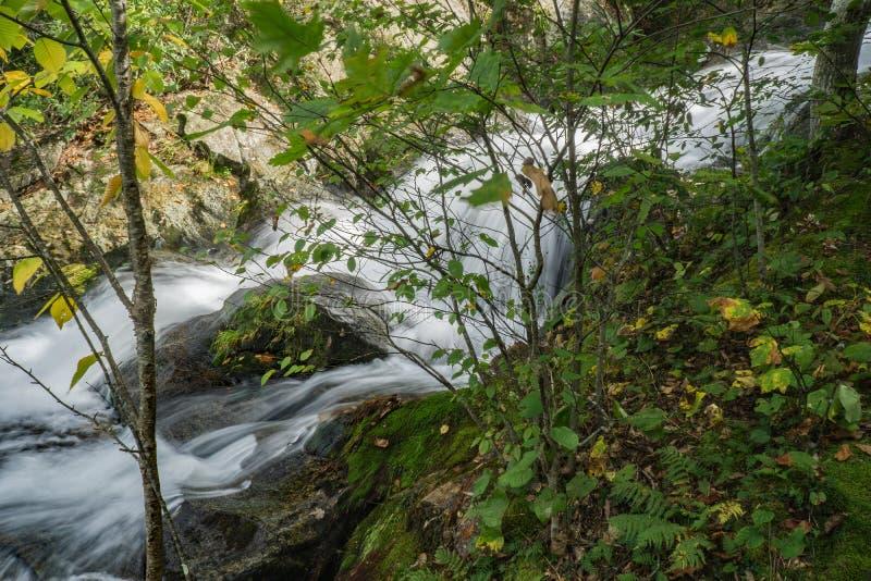 Één van de Vele Watervallen door de Crabtree-Dalingensleep - 2 royalty-vrije stock foto's
