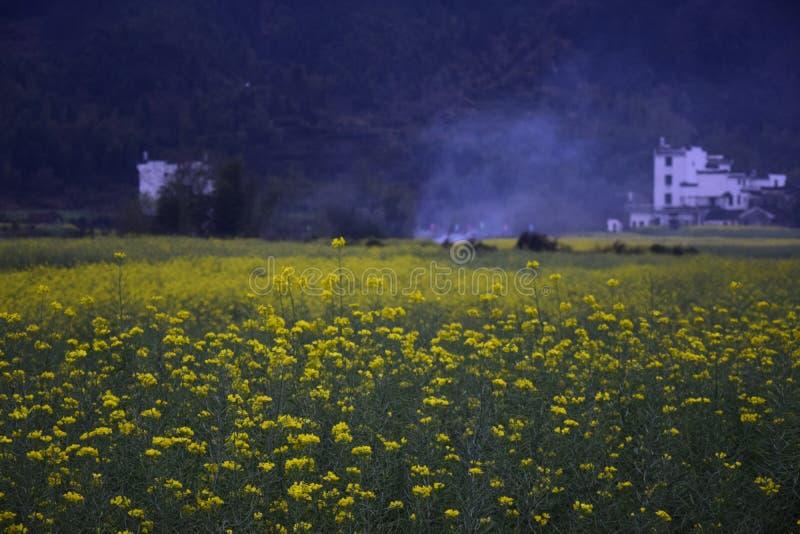 Één van Huangshan royalty-vrije stock afbeelding