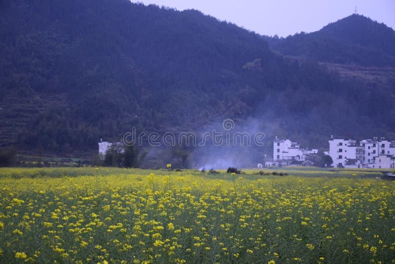 Één van Huangshan stock afbeeldingen
