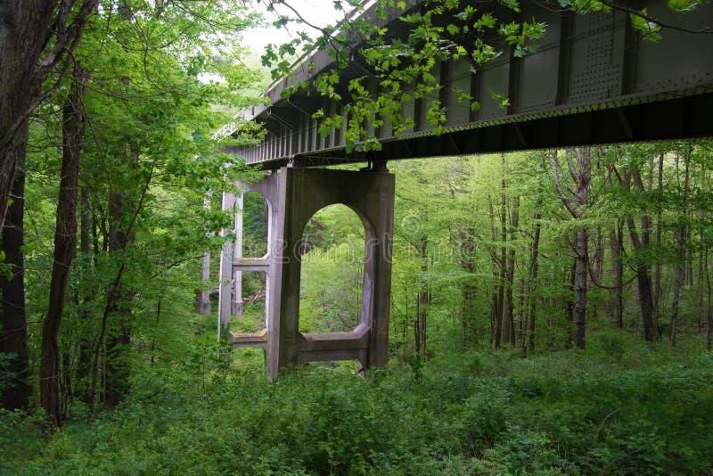 Één van vele Bruggen op Blauw Ridge Parkway, Virginia, de V.S. stock foto's