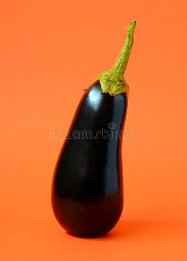 Één verse aubergine stock afbeeldingen