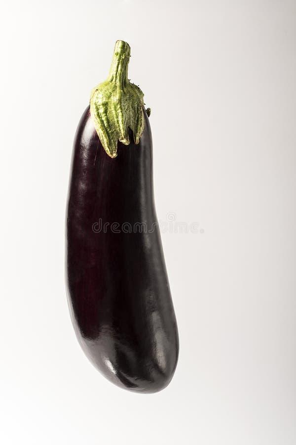 Één verse die aubergine met stam op witte achtergrond wordt geïsoleerd royalty-vrije stock afbeelding