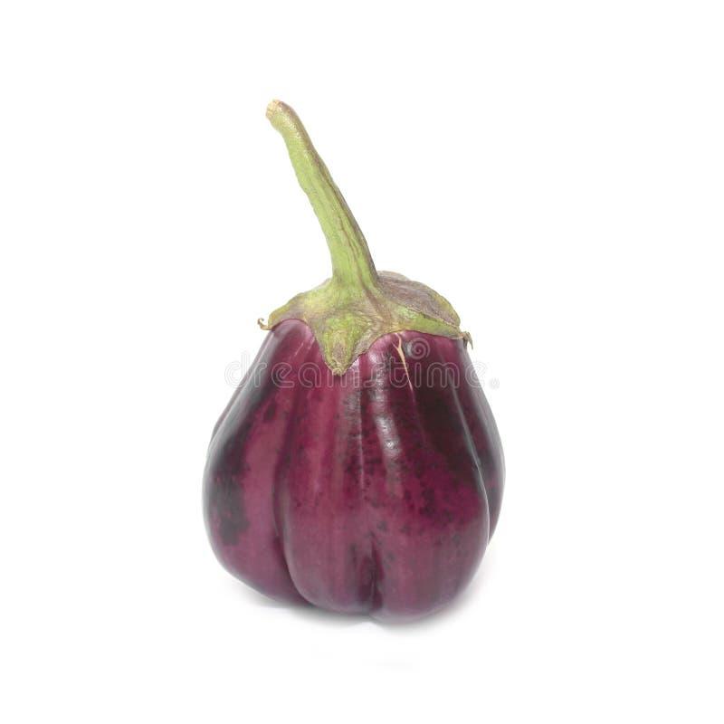 Één verse die aubergine op wit wordt geïsoleerd stock afbeeldingen