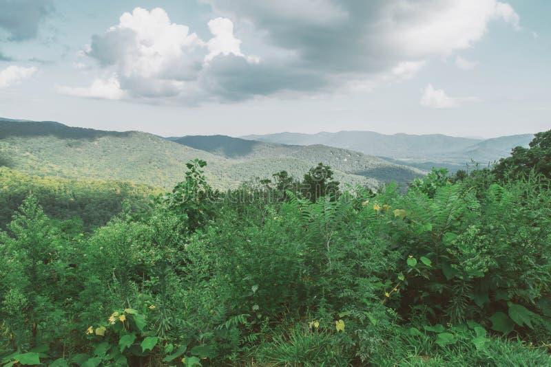 阿什维尔北卡罗来纳山风景 图库摄影