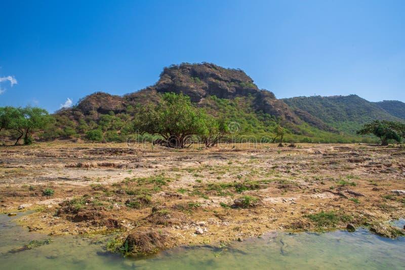 阿曼和旱谷Darbat,山景 免版税图库摄影