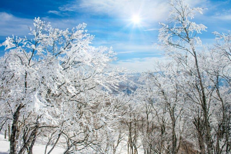野泽Onsen风景和山景在与日出和天空蔚蓝背景的冬天 库存图片