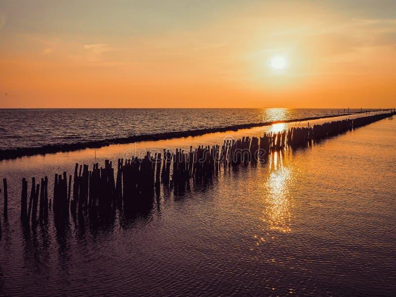 金黄自然海日落视图ouette和橙色天空风景 日落或日出反射本质上Bangkhuntien曼谷 库存照片