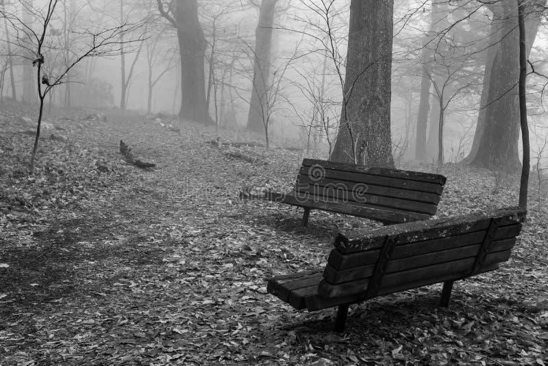 长凳有雾的看法在山公园 免版税图库摄影