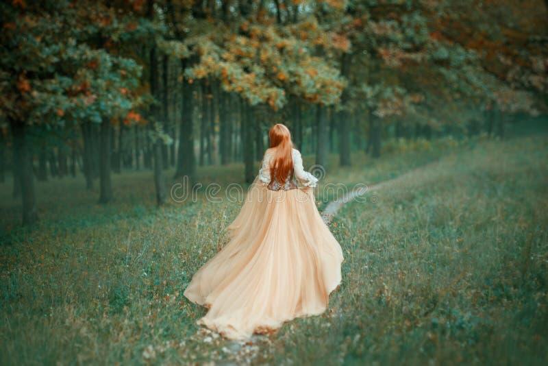 长的轻的昂贵的豪华礼服的神奇夫人有沿森林道路的长期落后的火车奔跑的,新的灰姑娘 库存照片