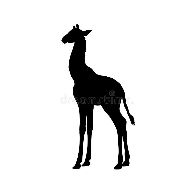 长颈鹿小牛崽哺乳动物的剪影动物 向量例证