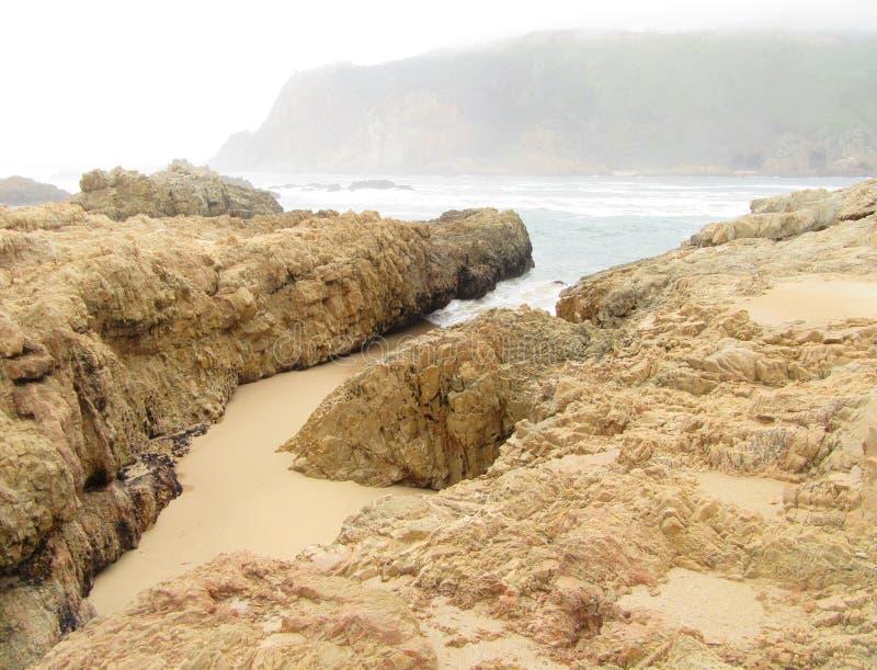 É i um o Sandy Beach do crocodilo foto de stock royalty free
