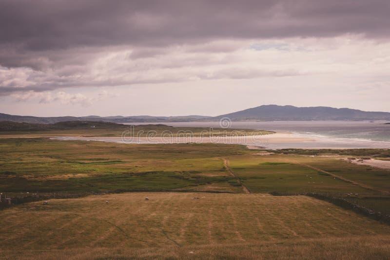 É a paisagem irlandesa na luz suave imagem de stock royalty free