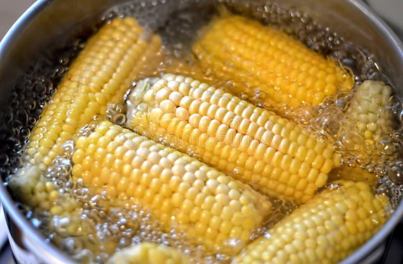 Download Ébullition de maïs photo stock. Image du doux, sweetcorn - 76075016