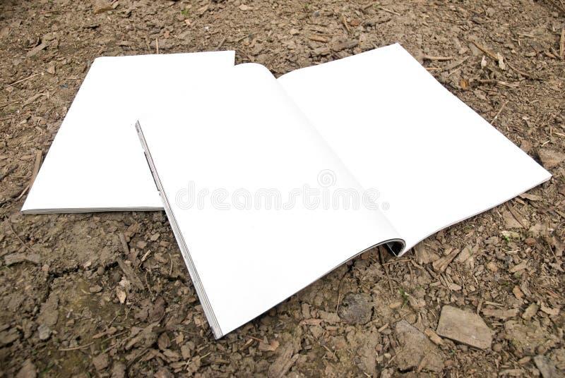 Écart blanc de revue et partie antérieure photos stock