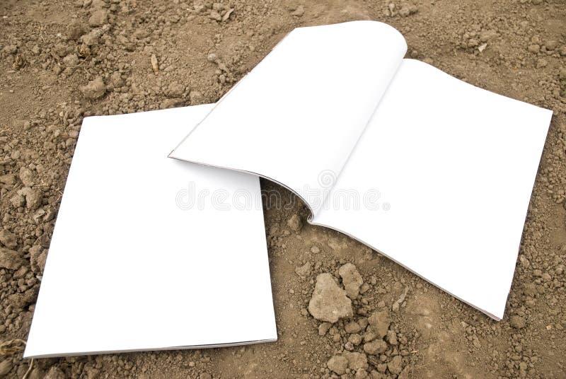Écart blanc de revue et partie antérieure photo stock