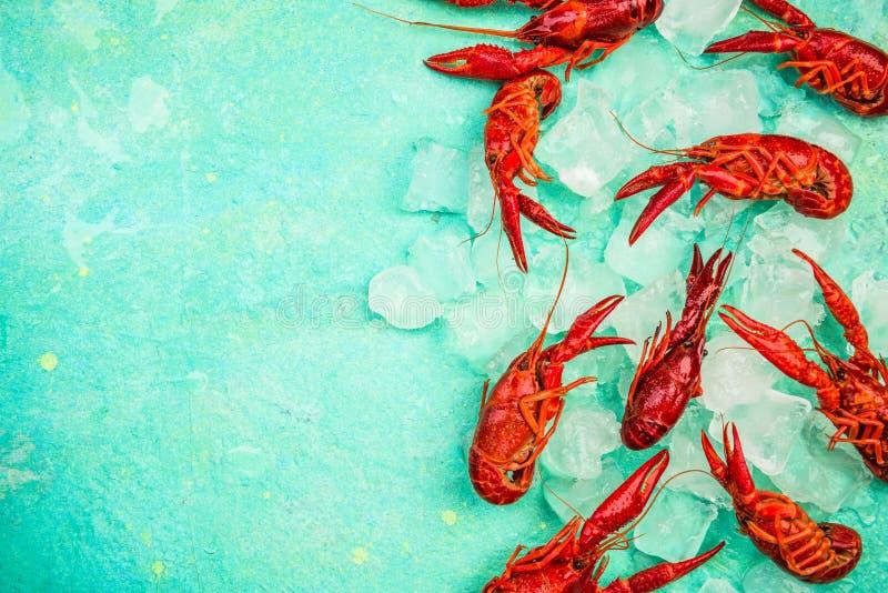 Écart rouge frais sur glace, vue sur le dessus, couleurs vives photo libre de droits