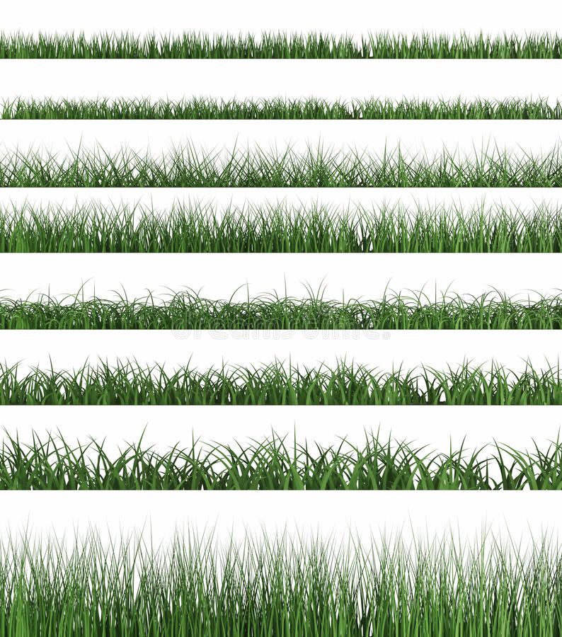 Échantillon d'herbe verte illustration stock