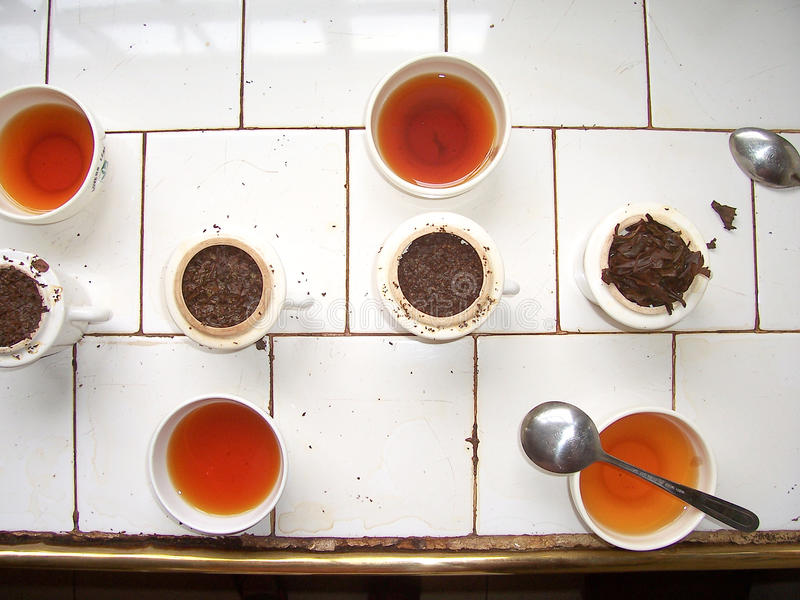 Échantillon de thé dans une usine de thé photographie stock libre de droits