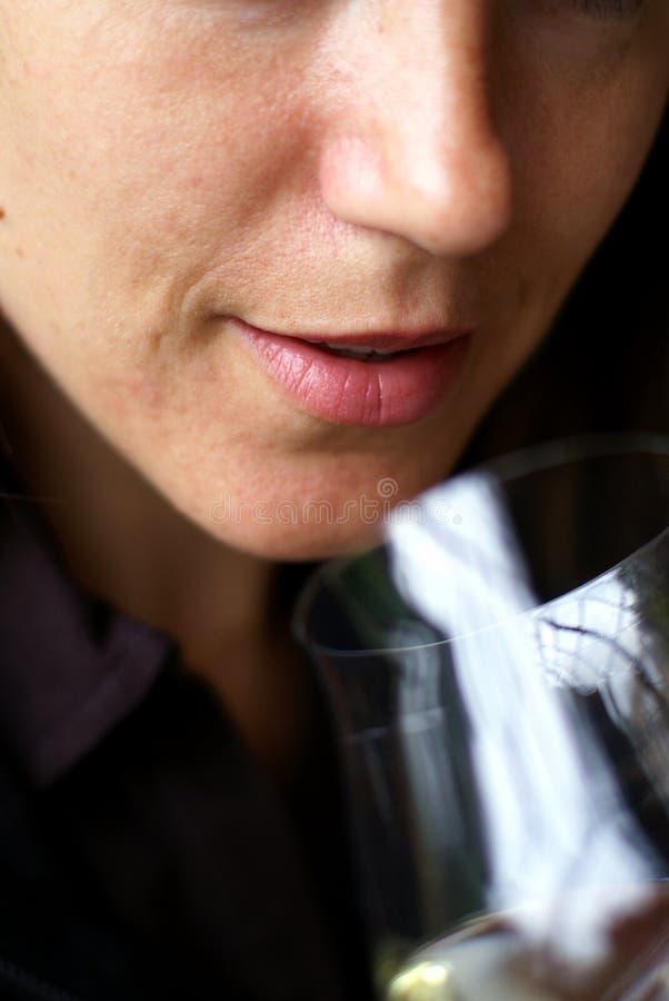Échantillon de vin photos libres de droits