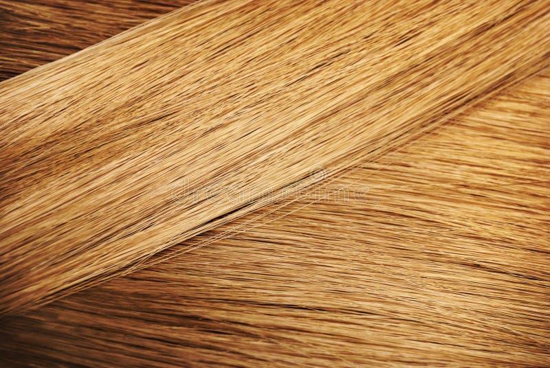 Échantillon parfait de cheveux photos stock