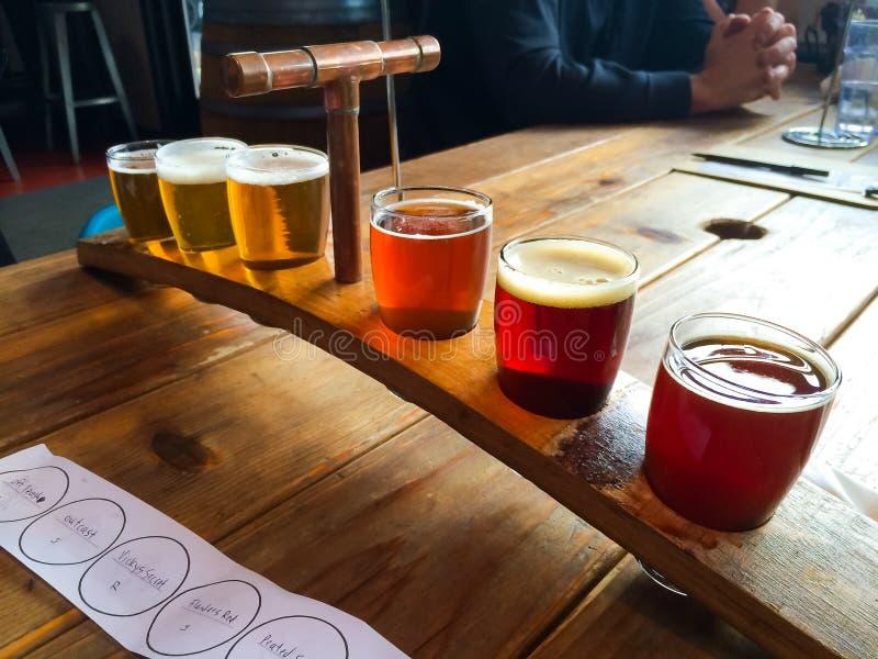 Échantillonneur de bière de métier photos libres de droits