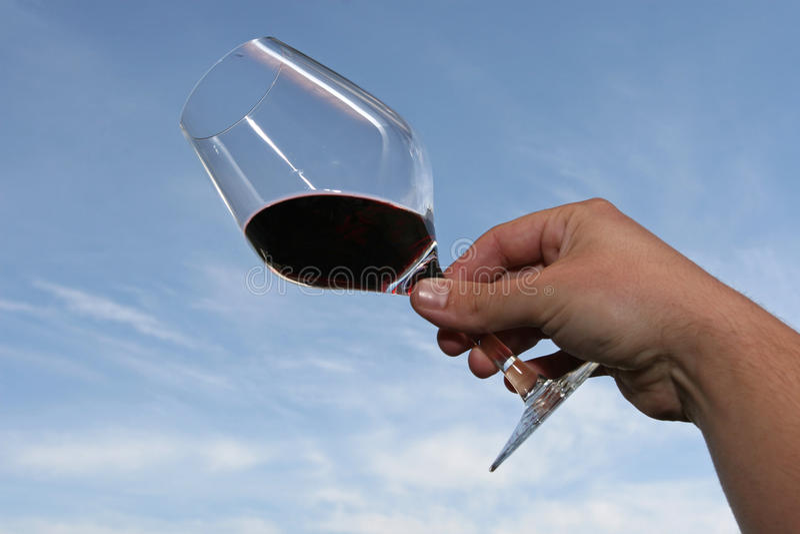 Échantillonneur de vin image stock