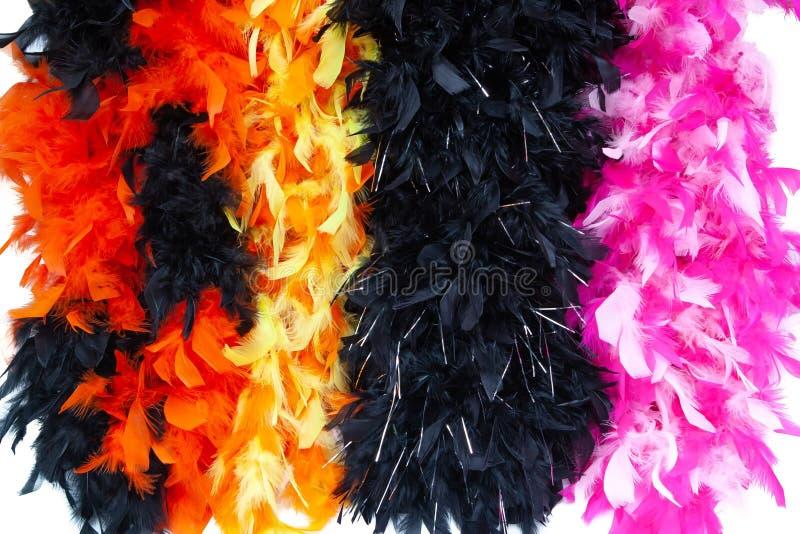 Écharpe multicolore de plume de costume, plume pelucheuse de costume image libre de droits