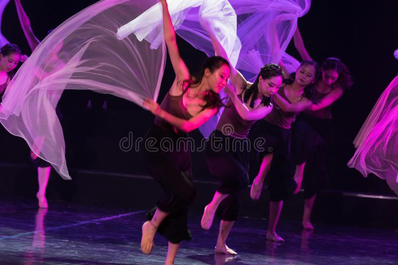 Écharpe pourpre 6--Âne de drame de danse obtenir l'eau image libre de droits
