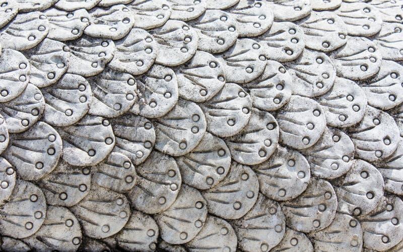 Échelle de Naga, textures photographie stock libre de droits
