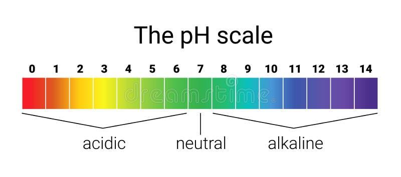 Échelle de pH équilibre infographic d'acide-base échelle pour la base d'acide d'analyse chimique illustration stock