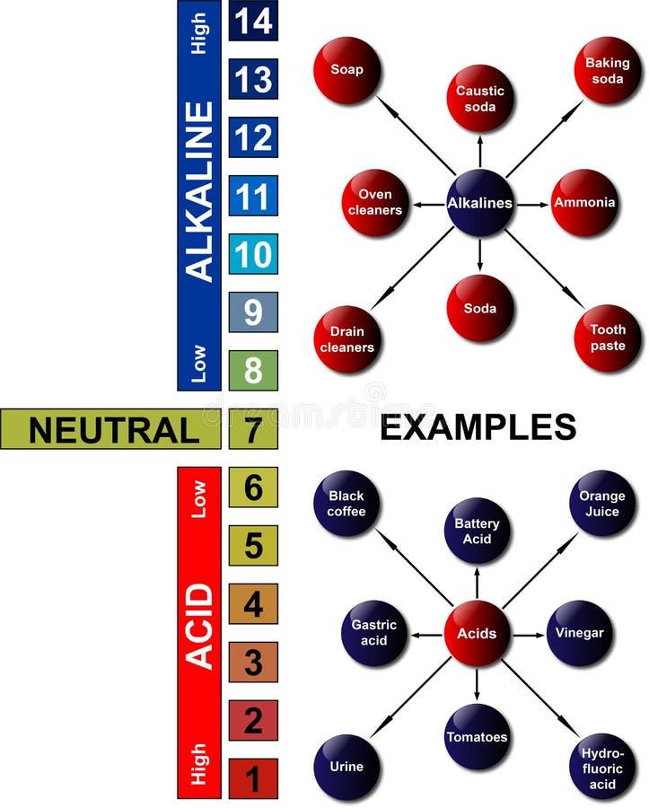 Échelle de pH - exemples d'acides et d'Alkalines illustration libre de droits