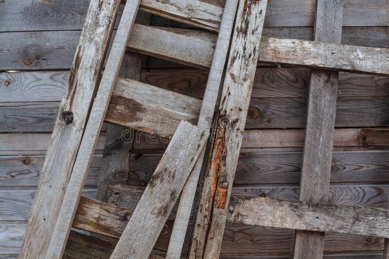 Échelle en bois photographie stock libre de droits
