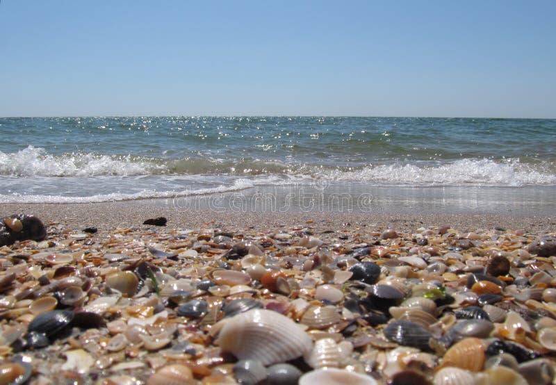 Échouez et des vagues sur la Mer Noire, Odessa images libres de droits