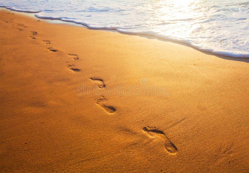 Échouez, vague et empreintes de pas au temps de coucher du soleil photographie stock