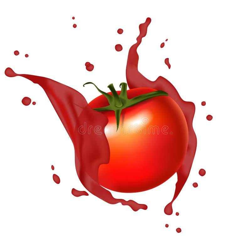 Éclaboussement rouge de tomate de jus Réaliste, éclaboussure juteuse des tomates 3d illustration libre de droits