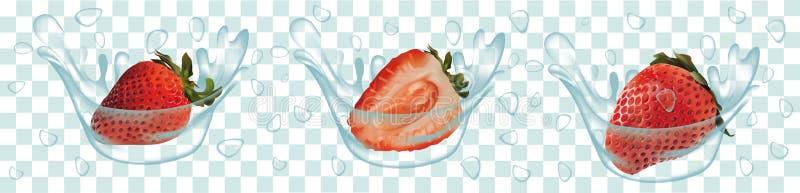 Éclaboussez la fraise dans le vecteur 3d réaliste de l'eau Fruit cru de fraise La fraise de totalité et de tranche avec éclabouss illustration de vecteur